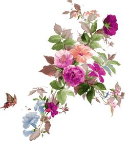 свежие цветы клипарт