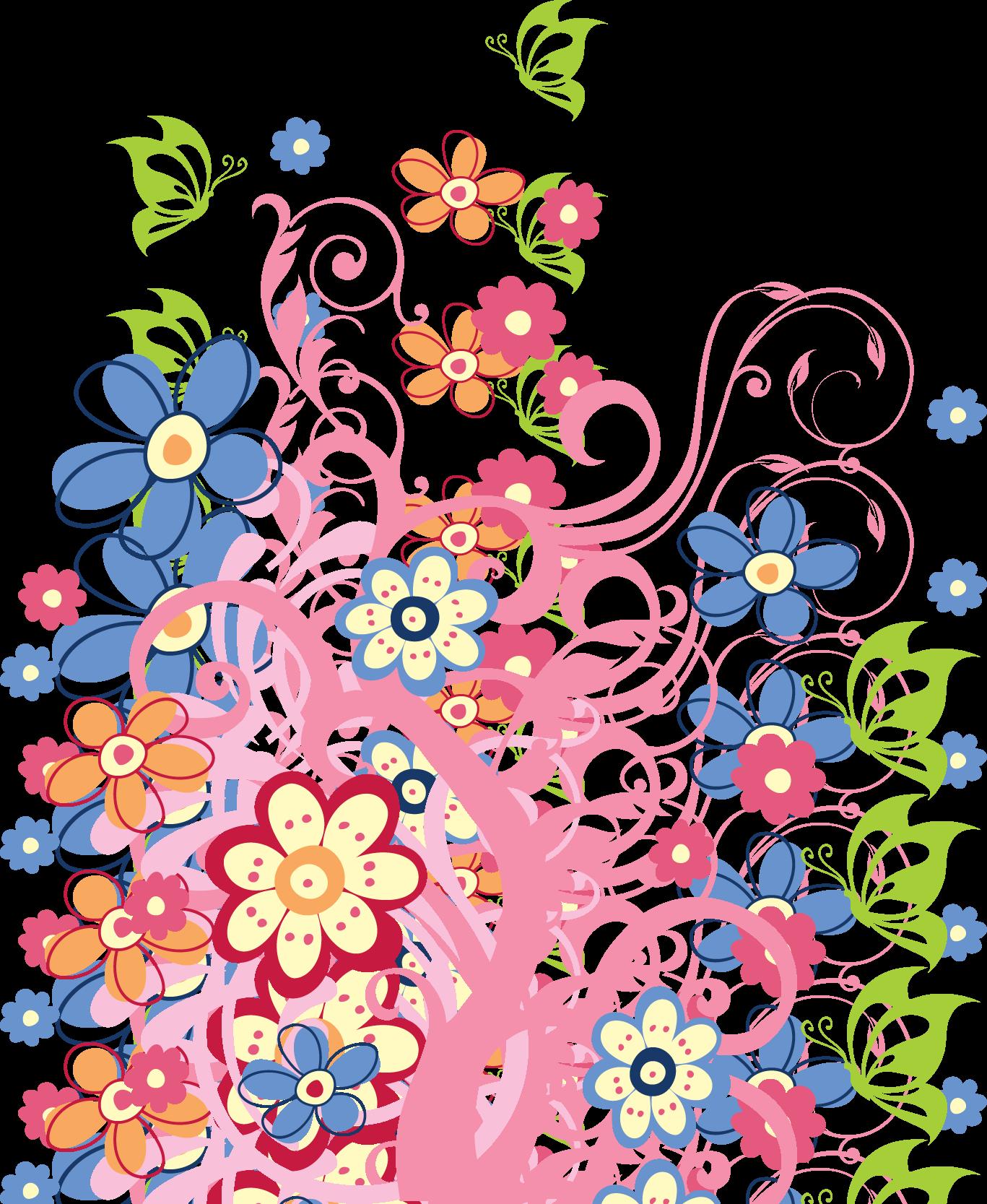 Фото розы на белом фоне  photosfloweryru