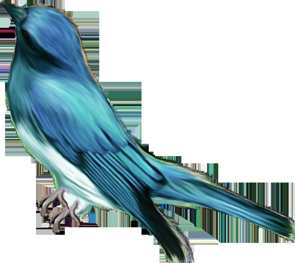 Птица пичужка 8