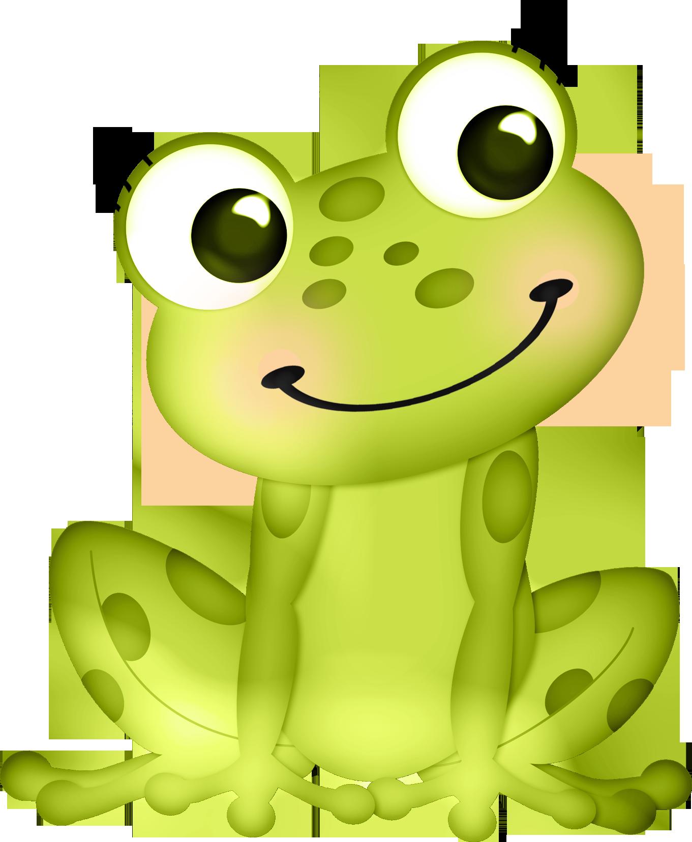 Картинка лягушка на кувшинке